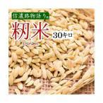 新米 籾貯蔵米 種籾もみ米30キロ 20袋=600キロ新潟県妙高産 送料無料 未検査米