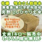 令和1年産米 無農薬 完熟 こしひかり 1kg 玄米 新潟県長岡産 精米無料 分搗き精米可能 無洗米 美味しいお米 コシヒカリ