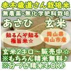 令和1年産米 無農薬 朝日-あさひ- 2kg 玄米 岡山県岡山市産 お米 白米 精米無料 分搗き精米可能 無洗米 美味しいお米