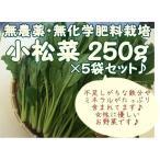 【小松菜 5袋セット】 『無農薬・無化学肥料栽培』 千葉県成田市おかげさま農場産