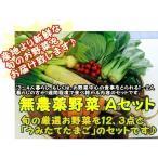 『 夏野菜詰め合わせ Aセット』3〜4名様位 『無農薬・無化学肥料栽培』 千葉県成田市おかげさま農場産