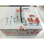 御贈答用化粧箱 うみたてたまご30  卵30個入り化粧箱 須賀養鶏場産