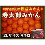 三ケ日みかん 9キロ 静岡県産 2Lサイズ お取り寄せフルーツ JAみっかび 青島みかん