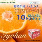 1月中旬ごろから 宮内いよかん 10kg 愛媛県産 M L 2Lサイズ お取り寄せフルーツ 伊予柑 いよかん