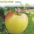 とき 36玉〜40玉(中玉) 10キロ箱 りんご 青森県産 トキりんご ときりんご