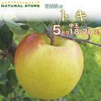 送料無料  トキりんご 18玉〜20玉(中玉) 5キロ箱 りんご 青森県産 トキりんご ときりんご