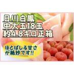 桃(白鳳) 18玉 4.8キロ正箱 山梨県産 最高級品 お中元 ご贈答用に最適です♪