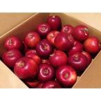 送料無料 紅玉 40玉から50玉 10キロ箱 りんご 山形県産 こうぎょく 山形 りんご アップルパイに最適 送料込み