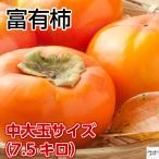 富有柿 愛媛県産  Lサイズ中大玉 10キロ箱 ご贈答用に最適です♪