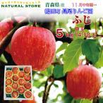 送料無料 ふじ りんご 約5キロ 青森県鶴田町 長尾りんご園産 14〜18玉 お取り寄せ 産直りんご