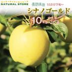 送料無料 シナノゴールド 36玉 (中大玉) 10キロ箱 りんご 長野県産 お取り寄せ