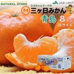 三ケ日みかん 8キロ 静岡県産 3Lサイズ お取り寄せフルーツ 青島みかん
