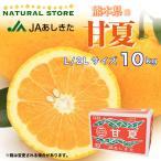 『甘夏』 10キロ箱 L 2L 3L 4Lサイズ 熊本県 あしきた産 お取り寄せフルーツ JAあしきた