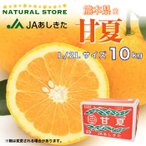 『甘夏』 10キロ箱 L 2L 3L 4Lサイズ 最上級品 熊本県 あしきた産 お取り寄せフルーツ JAあしきた