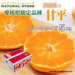 甘平 5kg 正箱 2L 3L 4Lサイズ 愛媛県産 かんぺいみかん かんぺい 高糖度 プレミアム柑橘  贈答用 ギフト 箱買い