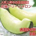 肥後グリーンメロン 2玉 専用箱 熊本県産 化粧箱 高級マスクメロン
