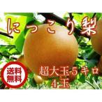送料無料 にっこり 梨 5キロ箱 4玉 超特大玉サイズ にっこり梨 栃木県産 ブランド梨
