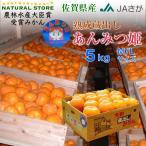 あんみつ姫 みかん 中大玉サイズ 5キロ箱 佐賀県産 蔵出しみかん 熟成みかん 美味しいみかん