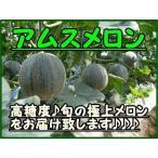 アムスメロン 2玉 化粧箱  千葉県銚子名産 お中元 御中元 ギフト ご贈答用に最適です 糖度16度保証付