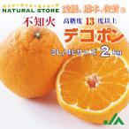 デコポン 不知火 2kg 愛媛県産 3L4Lサイズ大玉  柑橘 高糖度 みかんの王様