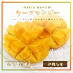 沖縄県産 キーツマンゴー 2玉化粧箱 幻のマンゴー 最高級品 残暑見舞い ご贈答用に最適です ギフト 沖縄マンゴー