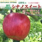 最短発送可能  送料無料  シナノスイート 13玉〜14玉(特大サイズ)5kg 箱 りんご 長野県 安曇野産 林檎 大玉 高糖度 ふるさと納税にも使われています。