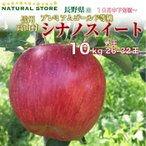10月中下旬から プレミアムゴールド限定 シナノスイート  10kg 専用箱 長野県  信州高山 さわやかりんご とびっきり プレミアムゴールド JA須高 ギフト用