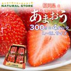 【要冷蔵】あまおう 4パック L 2Lサイズ  約300g×4パック お取り寄せフルーツ 福岡県産 いちご 苺 ブランドいちご