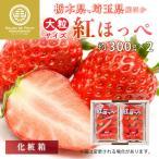 【要冷蔵】紅ほっぺ  2パック 2L 3Lサイズ 約300g×2パック 静岡県産 埼玉県産 苺 いちご べにほっぺ 美味しい