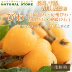 長崎びわ 化粧箱 300g×2P  長崎県産 ご贈答用 に最適です(^-^) 美味しい枇杷