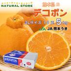デコポン 不知火 熊本デコポン 熊本 5kg 3L 18玉しらぬい 熊本県産 箱買い 柑橘 高糖度 JA熊本うき 贈り物 ギフト 贈答用 [当日発送可]