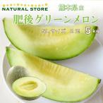 肥後グリーンメロン 5Lサイズ 3玉 7kg以上 青肉メロン 熊本県産 高糖度 甘い 熊本県のブランドメロン 果物 通販  [予約 5月下旬頃より発送]