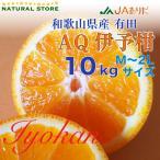 1月中旬ごろから 有田 AQ いよかん 10kg 和歌山県産 M L 2Lサイズ お取り寄せフルーツ 伊予柑 いよかん