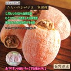 関東圏送料無料 市田柿 3パック化粧箱 長野県産 長野県産のブランド銘柄 未来のかがやき
