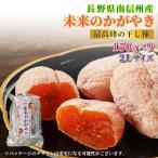 関東圏送料無料 市田柿 9パック化粧箱 長野県産 長野県産のブランド銘柄 未来のかがやき