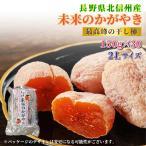 市田柿 未来のかがやき 2Lサイズ 30パック 長野県産のブランド干柿 みらいのかがやき