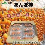 あんぽ柿 4L5L サイズ  8パック 山梨県産ほか とろける甘味が堪りません。