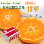甘平 5kg 化粧箱 L2Lサイズ  愛媛県産 最上級品! かんぺいみかん かんぺい 高糖度 プレミアム柑橘 ギフト 贈答用 箱買い