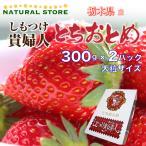 [要冷蔵]  いちご とちおとめ しもつけ貴婦人  2パック化粧箱 栃木県しもつけ産 ギフト ご贈答用に最適です