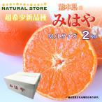 みはやみかん 2kg化粧箱 熊本県産のブランド柑橘 紅みかん 紅いダイヤ 中玉サイズ 美味しい柑橘 みはや お取り寄せフルーツ ギフト 送料無料 箱買い
