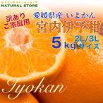 お客様感謝セール いよかん 5kg 正箱 2L 3Lサイズ 愛媛県産 お取り寄せフルーツ 柑橘 伊予柑 訳あり ご家庭用
