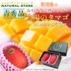 宮崎マンゴー 太陽のタマゴ 青秀 2Lサイズ 350g以上 2玉 JAはまゆう JAこばやし 他 完熟マンゴー マンゴー お取り寄せ フルーツ 果物 ギフト [最短で当日発送]