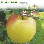 最短でご納品可能です トキりんご 5玉〜8玉(大玉)  2kg 化粧箱 りんご 青森県産 リンゴ トキりんご ときりんご 林檎 ギフト ご贈答用 大玉 蜜入り 高糖度