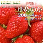【要冷蔵】ゆめのか 4パック 2L 3Lサイズ 約300g×4パック  長崎県産 苺 いちご イチゴ ブランドいちご