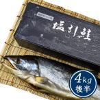 新潟 村上 名産 塩引鮭(塩引き鮭)一尾物4kg後半(シャケ サケ 塩鮭)