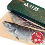 新潟・越後村上 塩引き鮭切身姿造り3kg後半(シャケ サケ 塩鮭)
