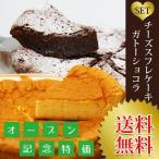 送料無料 濃厚チーズケーキ&ガトーショコラセット 激安