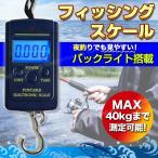 釣り デジタル スケール フィッシング 吊り下げ フック 魚 フィッシュ 計測 計量 夜釣り 夜間 バッグライト ストラップ付