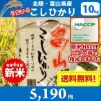 【28年産 新米】【送料無料】北陸・富山県産こしひかり(風の盆) 10kg