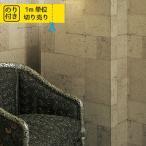 壁紙 のり付き 張り替え おしゃれ サンゲツ XSELECT SG-5967